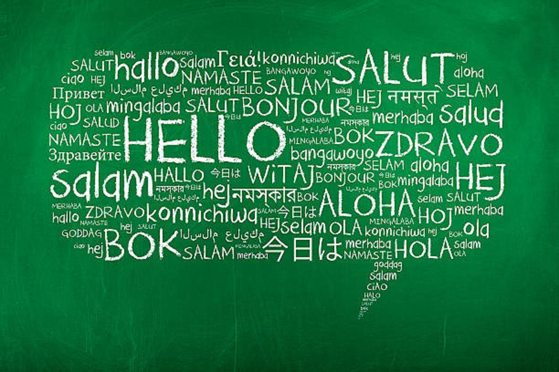 traductores en venezuela